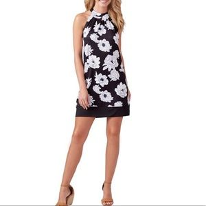 Mudpie Natalie Bow Tie Black Floral Dress